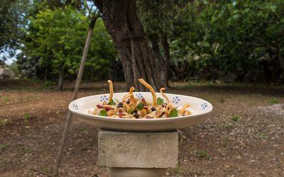 Ciceri e trìa rivisitata: la cucina salentina di Ivan Tronci